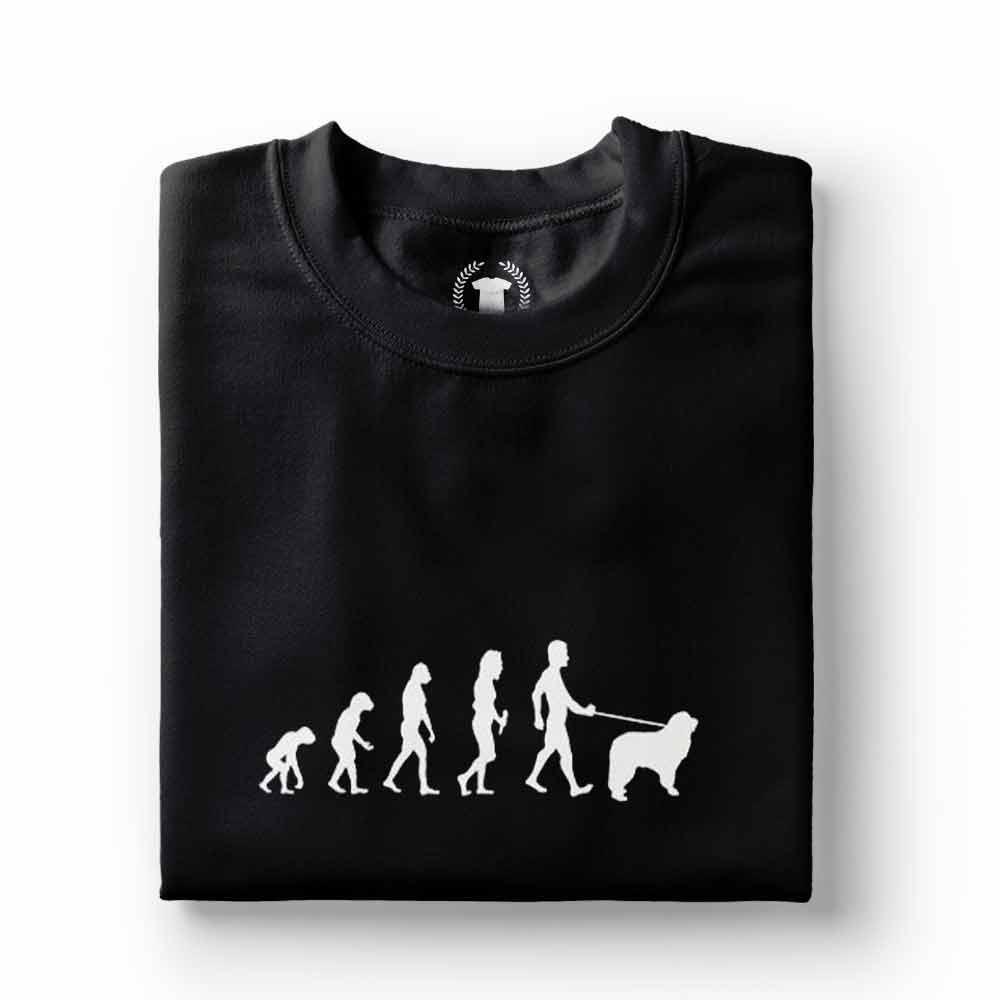 camiseta dono de labrador passeio preta