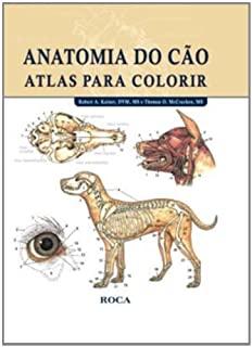 Anatomia Do Cao   Atlas Para Colorir