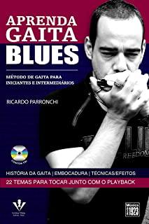 Aprenda Gaita Blues