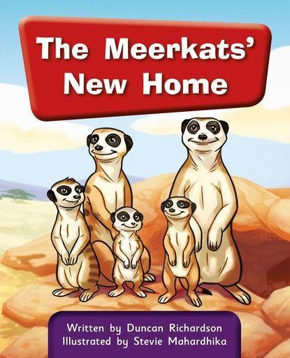 THE MEERKATS NEW HOME
