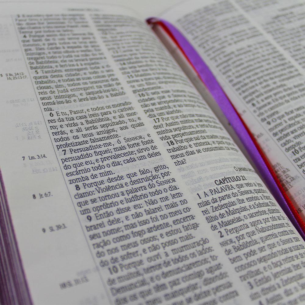 Bíblia ACF Leão Laranja - Letra Grande Soft Touch