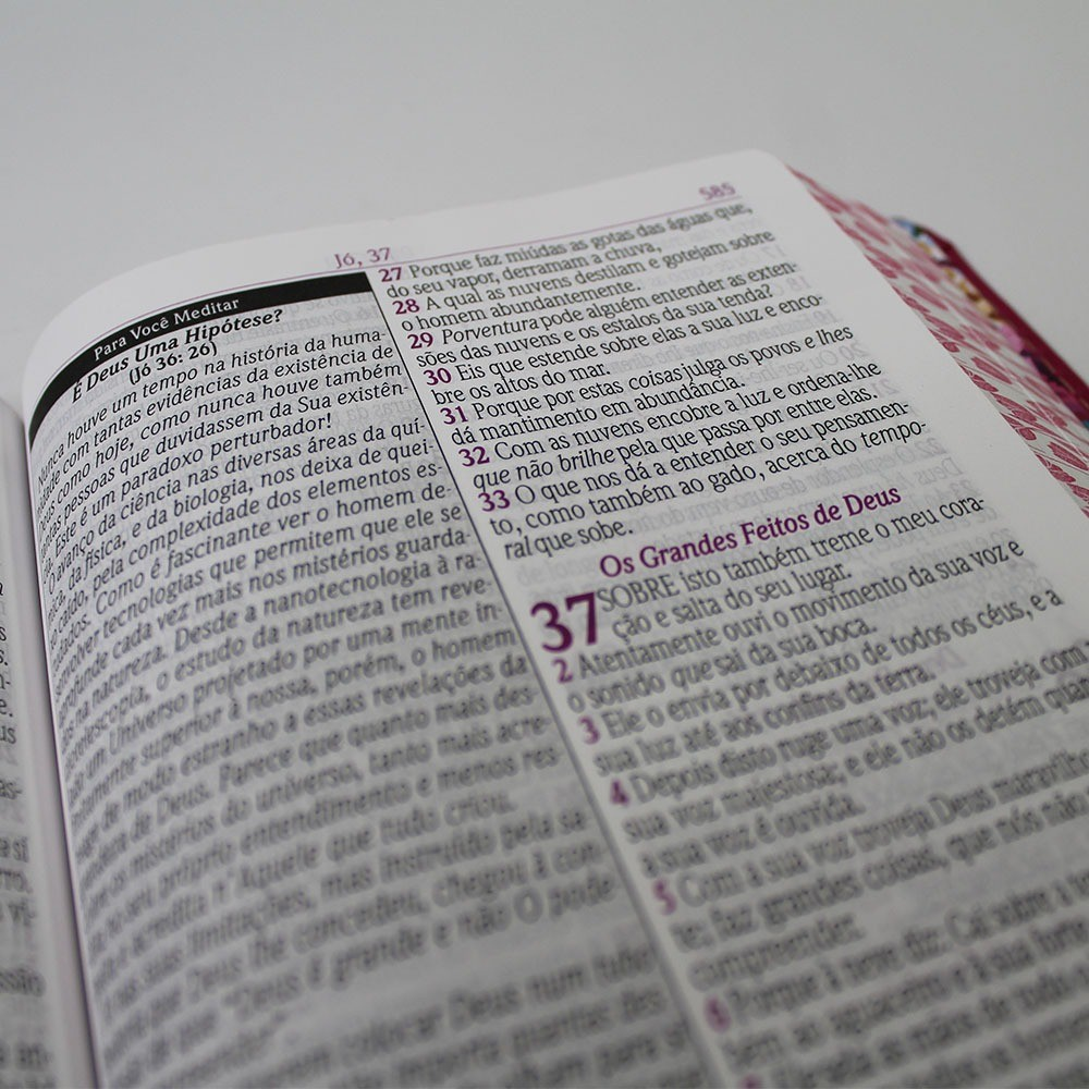 Bíblia de Estudo da Mulher Sábia com Harpa Avivada e Corinhos
