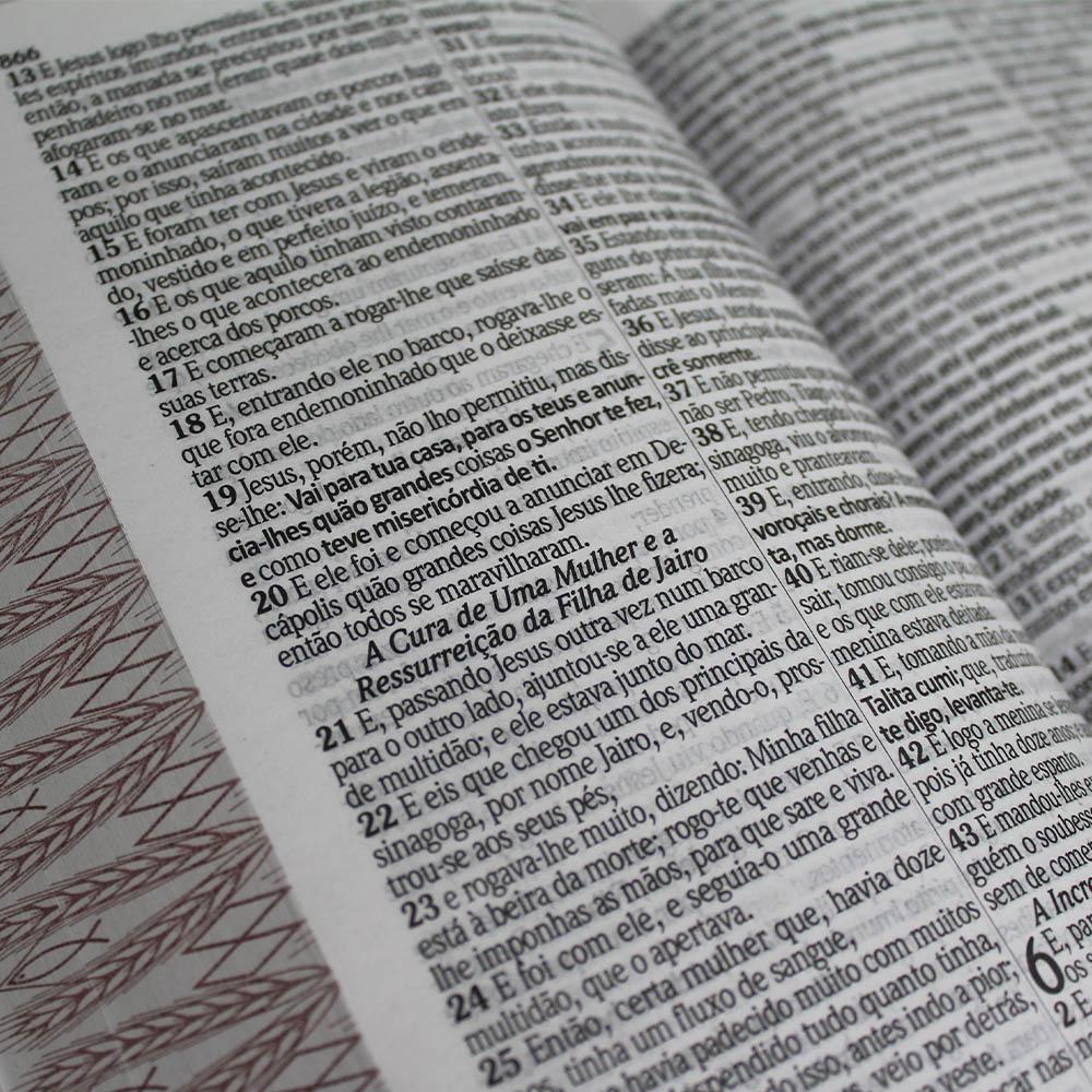 Bíblia Letra Gigante com Harpa Avivada Corinhos Laminada | Palavras Jesus Destaque
