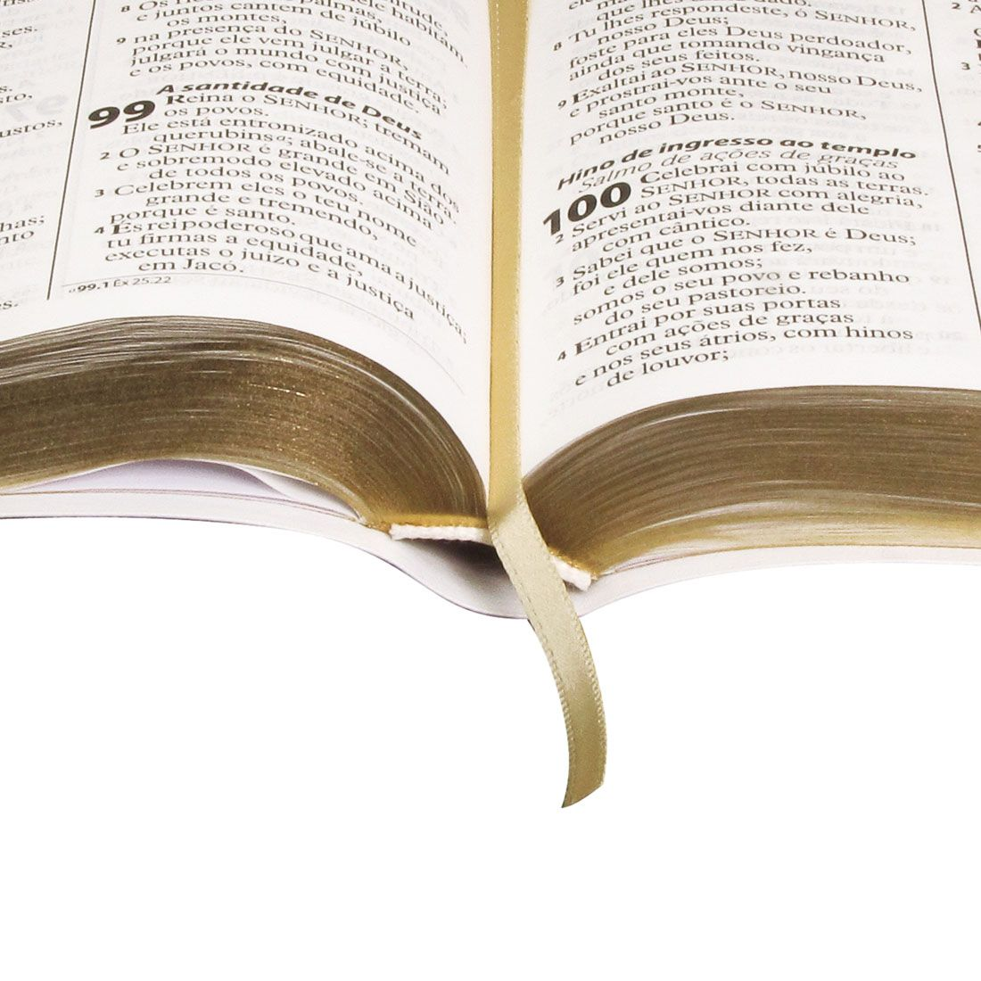Bíblia Letra Gigante com Índice | ARA - Branca