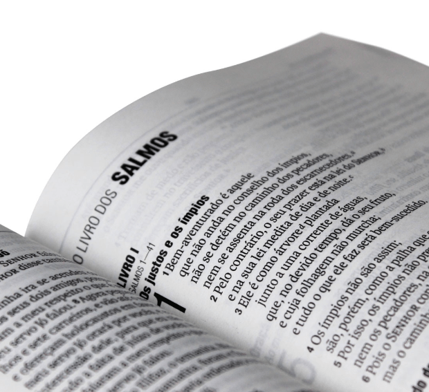 Bíblia Letra Grande Brochura | NAA