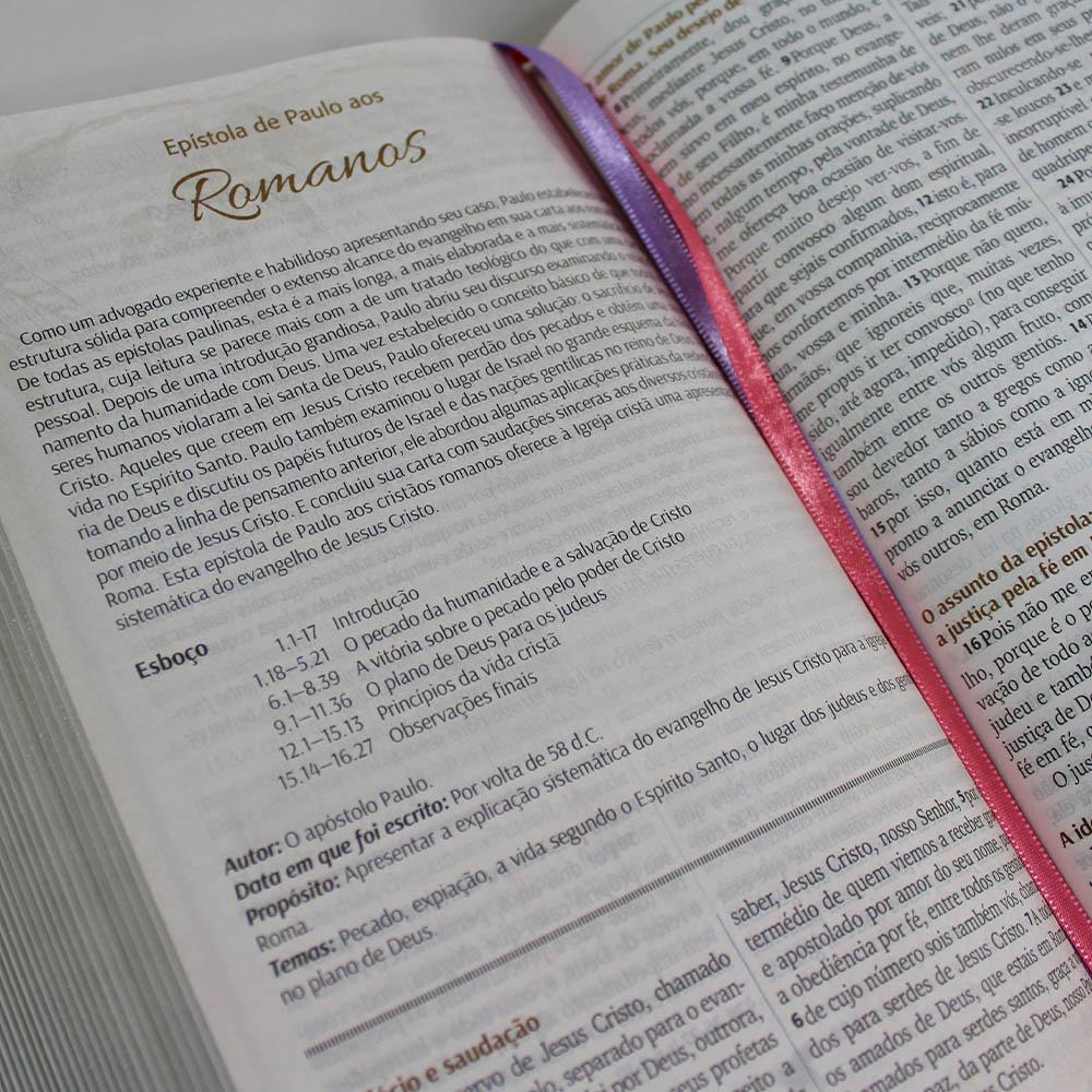 Bíblia Letra Grande com Pão Diário - Lilás
