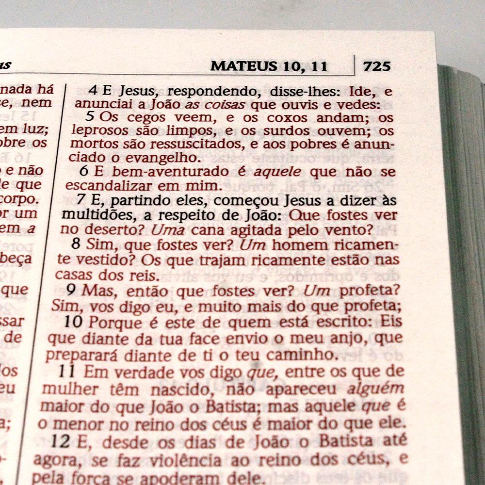 Bíblia Sagrada | Capa Dura | Tudo Foi Criado | ACF