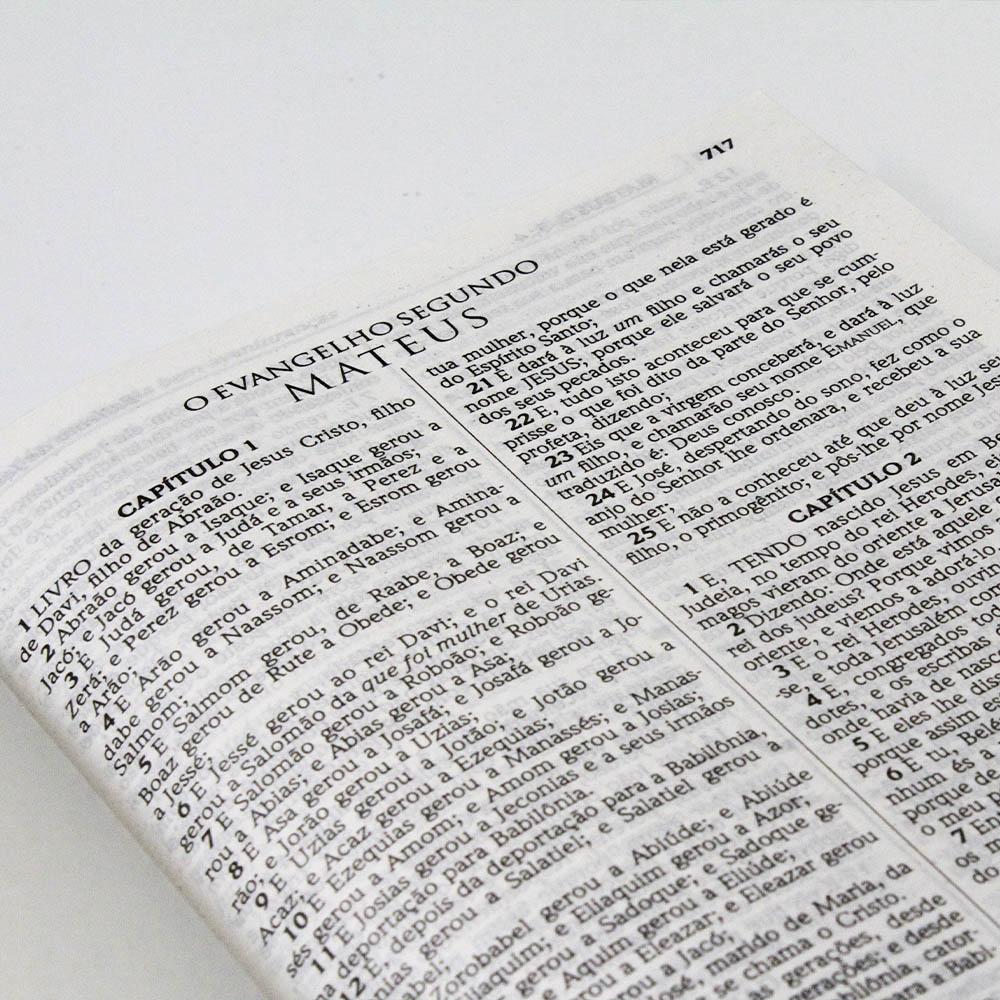 Bíblia Sagrada Infantil   ACF   Letra Média   Capa Dura Lhama   Turminha Família Cristã