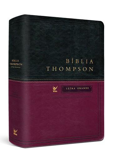 Bíblia Thompson Dois Tons Letra Grande