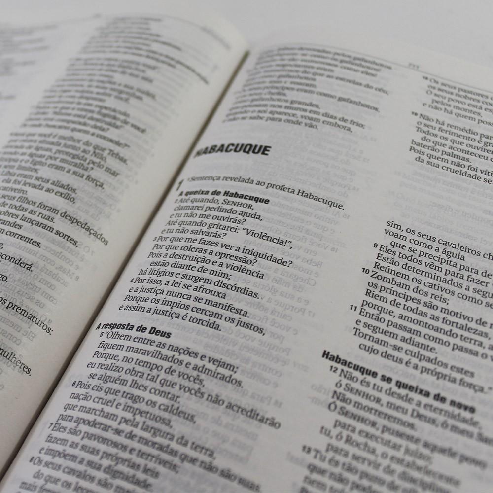 Kit 05 Bíblias NAA Jesus Eterno | Capa Dura