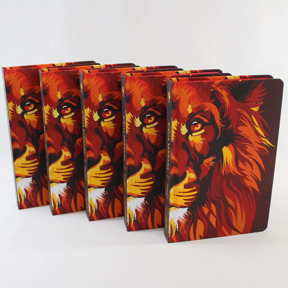 Kit 05 Bíblias NVT Lion Colors Fire | Capa Dura