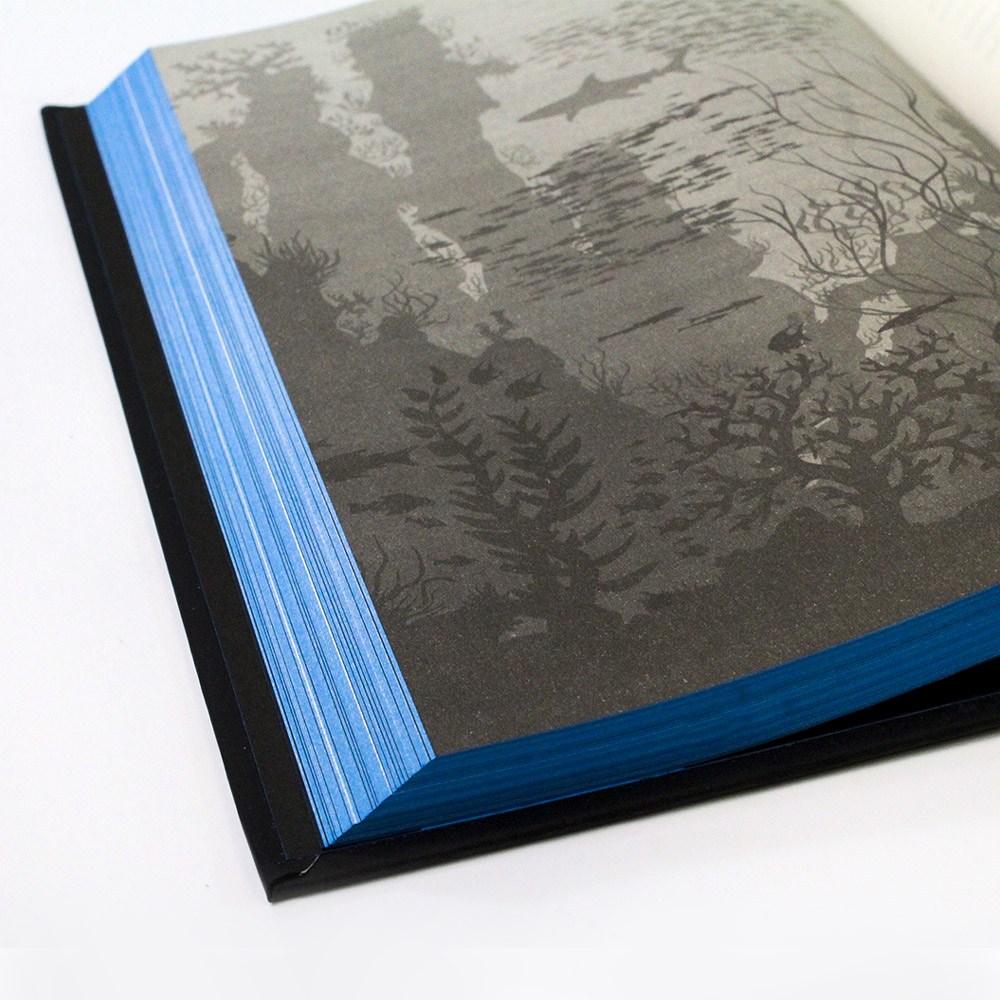 Vinte Mil Léguas Submarinas | Edição Premium | Julio Verne