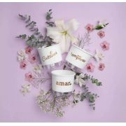 Conjunto 3 Vasos Autoirrigáveis P - Cultivar Temperar Amar - Cor Branco - Vasos Raiz