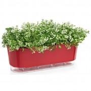 Jardineira Auto Irrigável 40cm - Cor Vermelha - Raiz