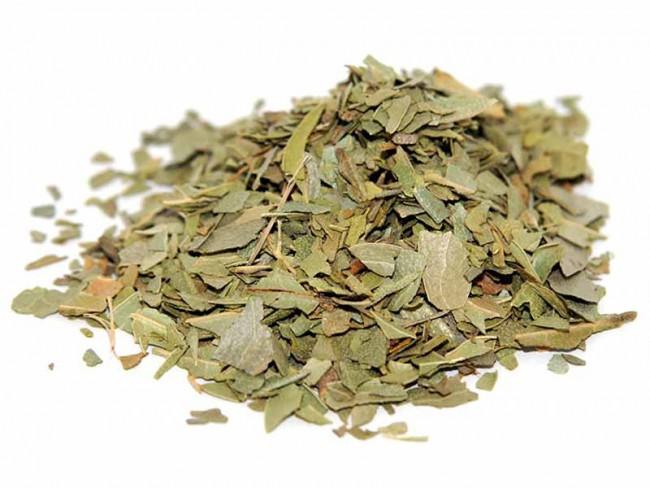 Chá de Boldo Orgânico - 15g - Vale Ecológico