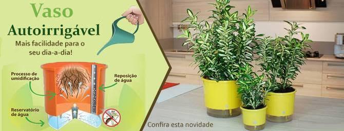 Conjunto 3 Vasos Autoirrigáveis P - Amor Tempero da Vida - Cor Verde - Vasos Raiz
