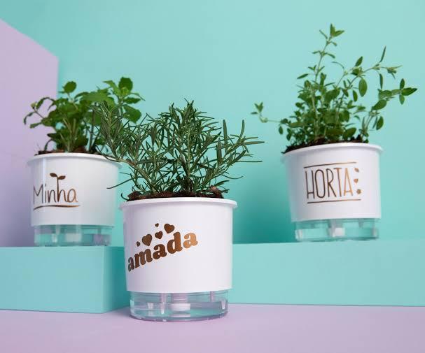 Conjunto 3 Vasos Autoirrigáveis P - Minha Amada Horta - Cor Branco - Vasos Raiz