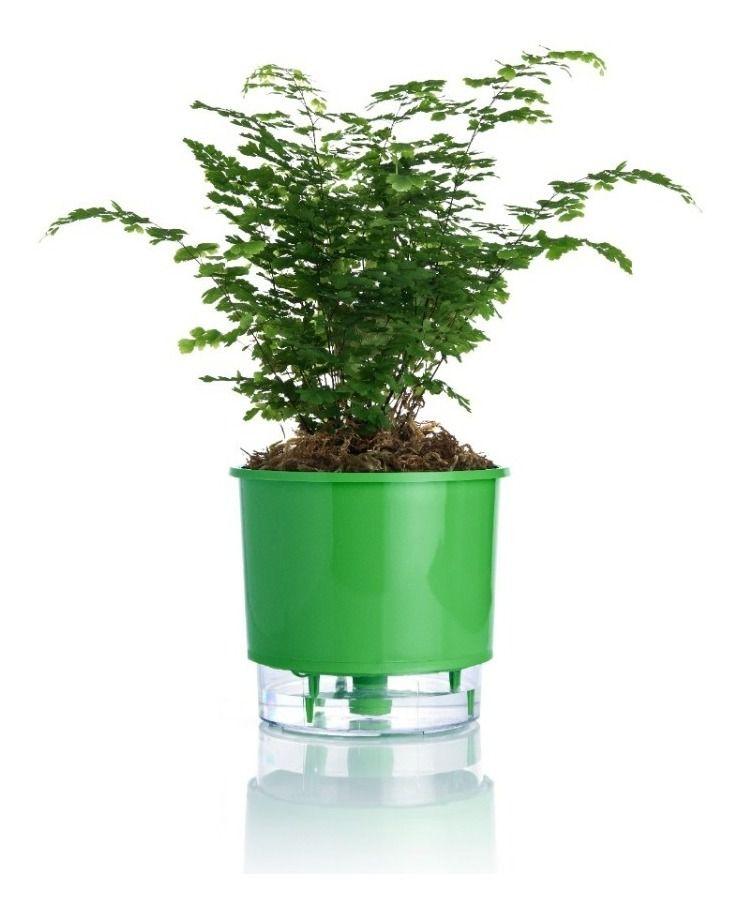 Vaso Autoirrigável Médio 16cm x 14cm Verde Escuro - Raiz