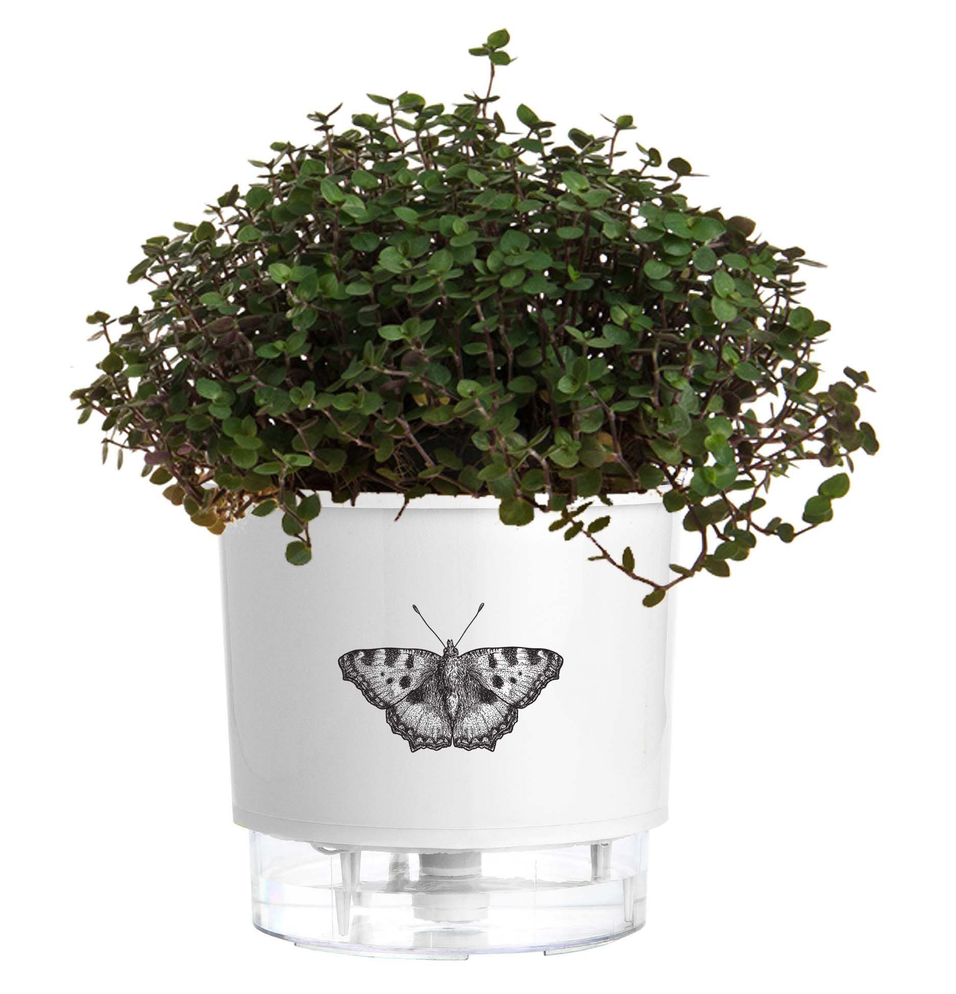 Vaso Autoirrigável Pequeno Branco Borboleta Linha Jardim de Insetos - Raiz