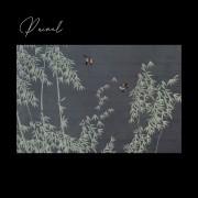 Painel Natureza Classic Designs M17306