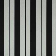 Papel de Parede Listras Classic Stripes CT889072 Preto