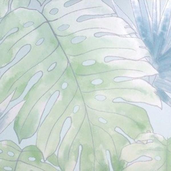 Papel de Parede folhagens costela de adão tropical natureza