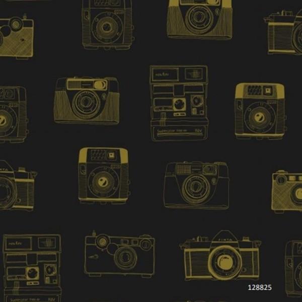 Papel de Parede máquinas fotográficas antigas