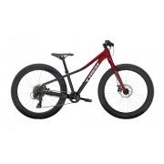 Bicicleta Trek Roscoe 24