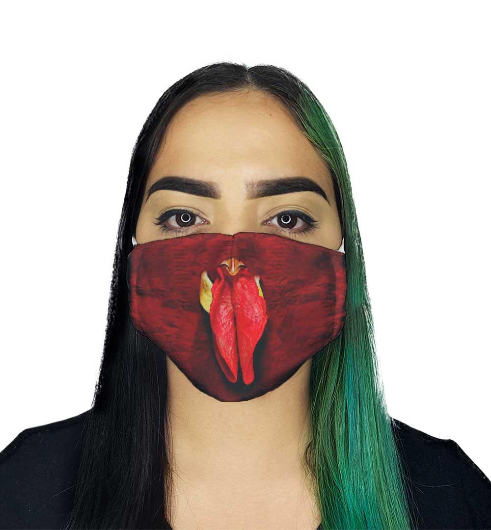 Máscara Galo
