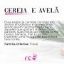 Difusor De Ambiente 240ml Premium - Cereja e Avelã