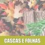 Essência Concentrada 100ml Cascas E Folhas