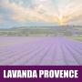 Essência Concentrada 100ml Lavanda Provence