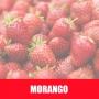 Essência Concentrada 100ml Morango