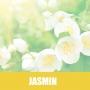 Essência HS Tipo Jasmin 1/80