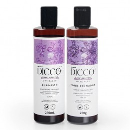 Kit Matizador Loiro Perfeito Shampoo + Condicionador - DICCO