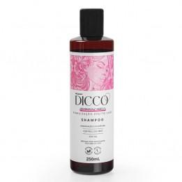 Shampoo Efeito Liso Cabelos Disciplinados e Sem Frizz Desmaia Cabelo - DICCO