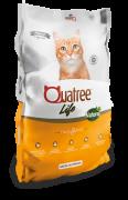 Quatree Life Gatos Castrados
