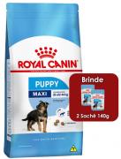 Ração Royal Canin Maxi Junior para Cães Filhotes de Raças Grandes de 2 a 15 Meses de Idade 15kg