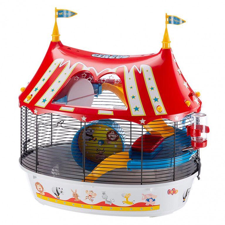 Gaiola Circus Fun