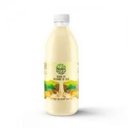 Bebida de castanha de caju 981ml - Annora