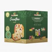 PRÉ VENDA - Panettone com frutas - Grani Amici