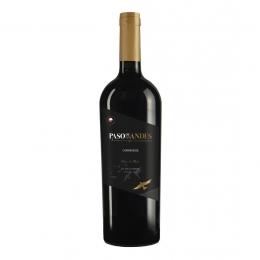 Vinho Paso de Los Andes Carmenere 750 ml
