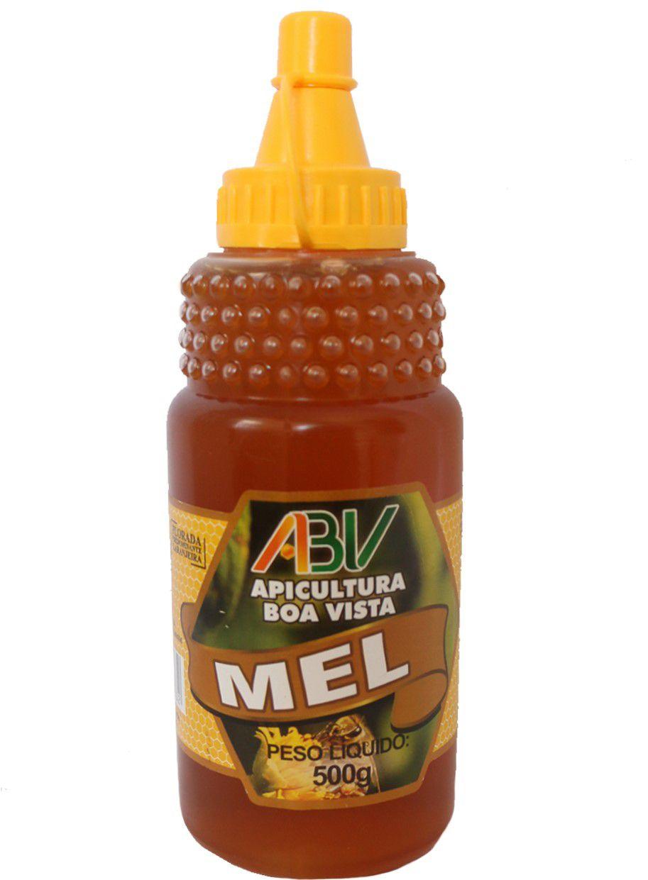 Mel puro bisnaga pet 500g