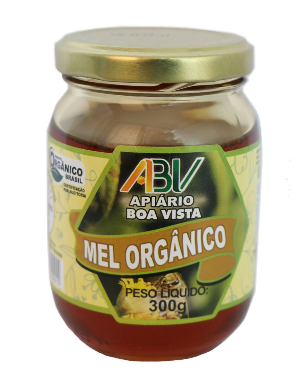 Mel puro orgânico pote vidro 300g