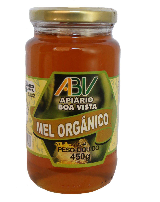 Mel puro orgânico pote vidro 450g