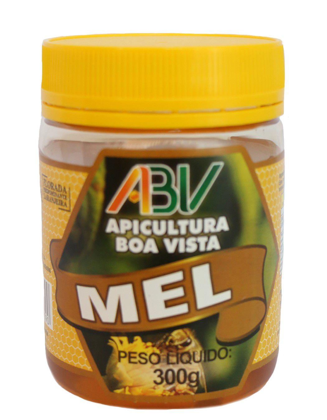 MEL PURO POTE PLAST. 300G