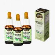 Extrato de Própolis Verde alecrim Orgânico - Kit c/03 unidades