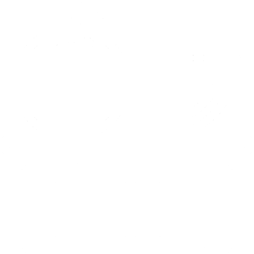 Pesagem e Medição