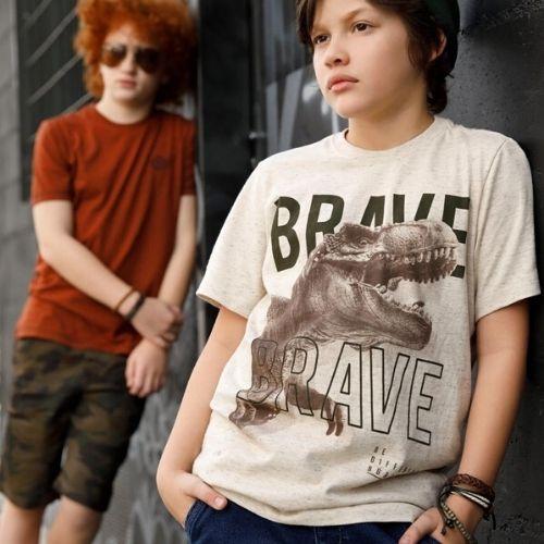 Camiseta Infantil Masculina Bege Mescla Brave
