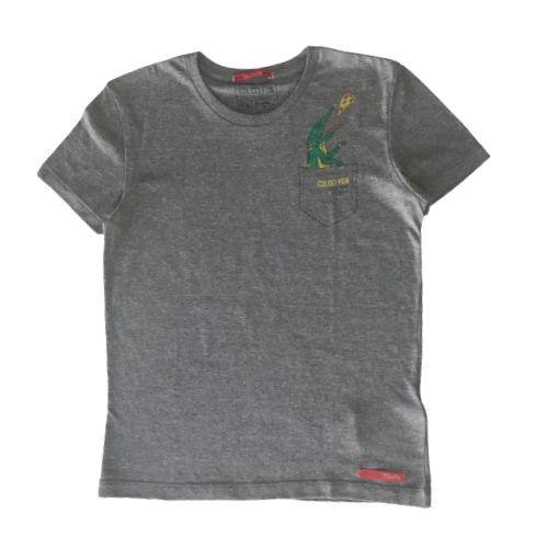 Camiseta Infantil Masculina Cinza Jacaré
